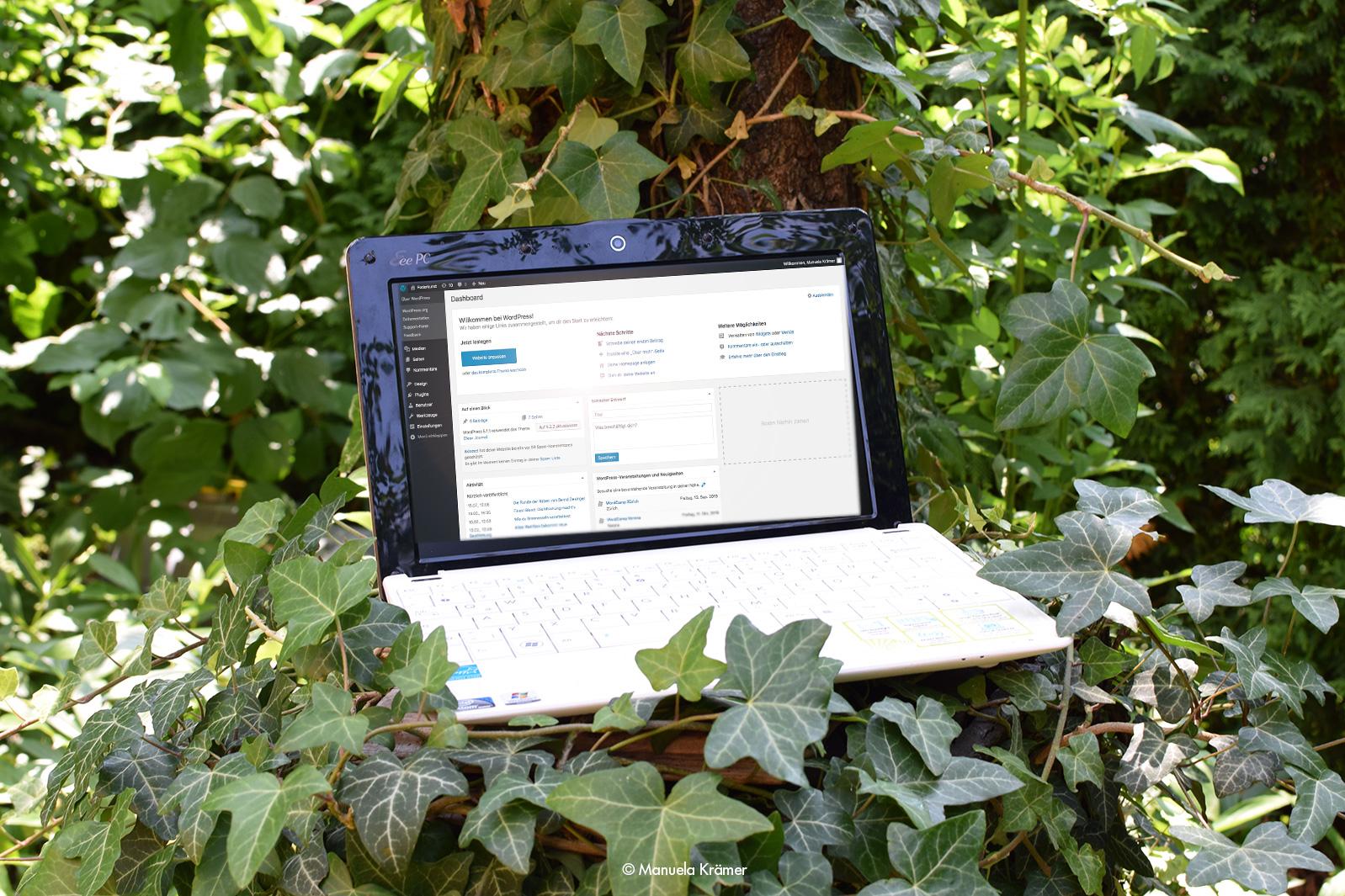 Laptop auf Baumstumpf zeigt Blogtexte von Manuela Krämer • Federkunst